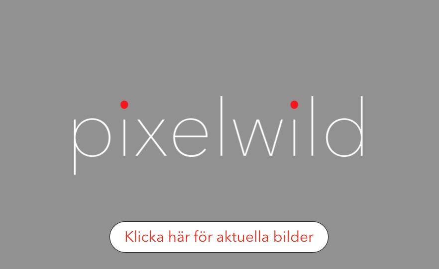 pixelwild.com